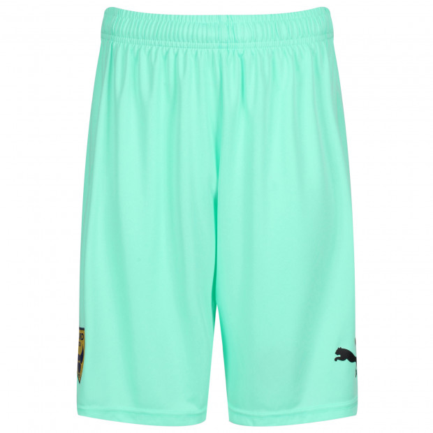 Junior Replica Goalkeeper Short Green